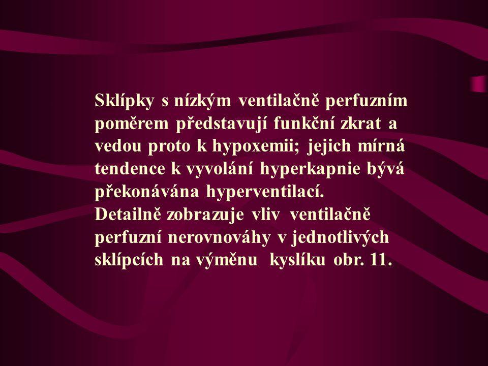 Sklípky s nízkým ventilačně perfuzním poměrem představují funkční zkrat a vedou proto k hypoxemii; jejich mírná tendence k vyvolání hyperkapnie bývá překonávána hyperventilací.