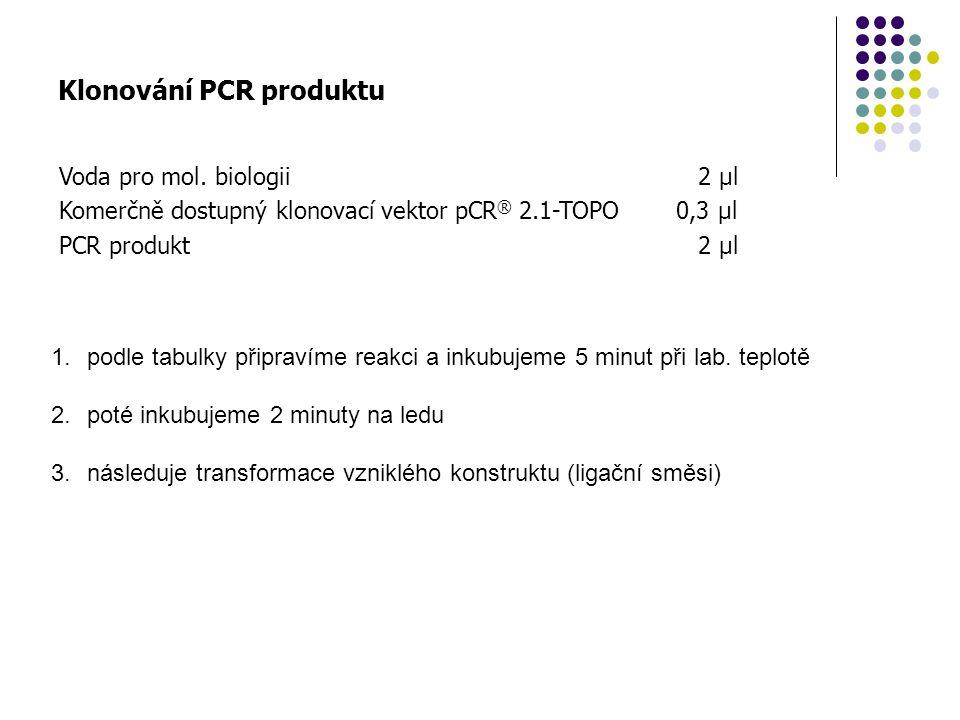 Klonování PCR produktu
