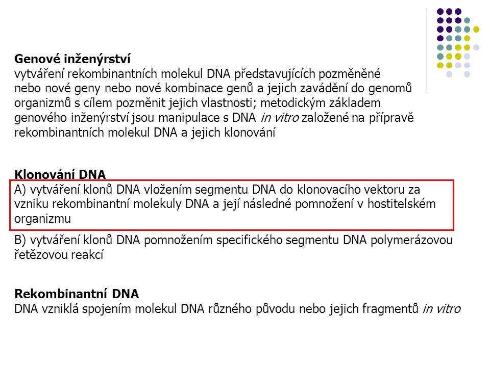 Genové inženýrství vytváření rekombinantních molekul DNA představujících pozměněné.