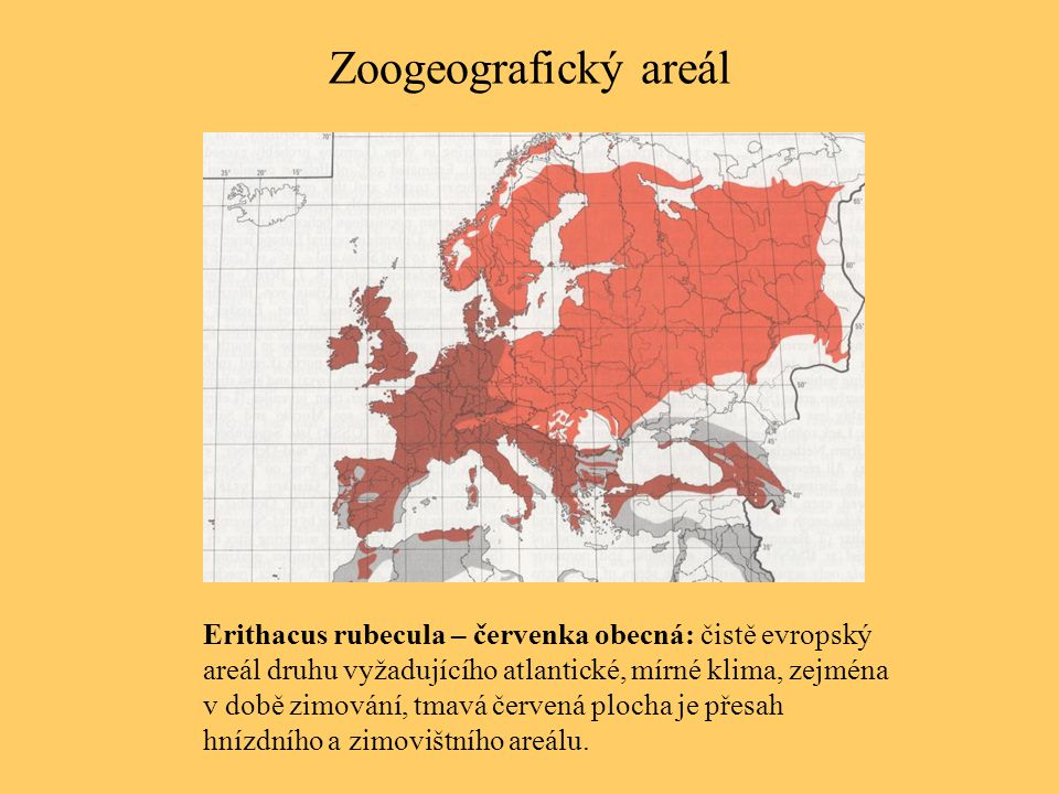 Zoogeografický areál