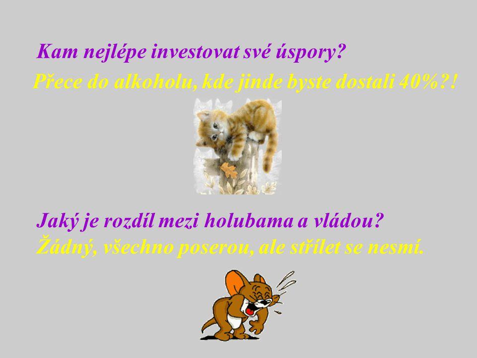 Kam nejlépe investovat své úspory