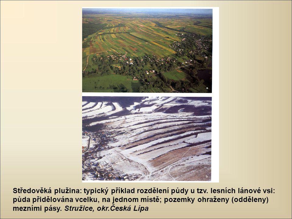 Středověká plužina: typický příklad rozdělení půdy u tzv