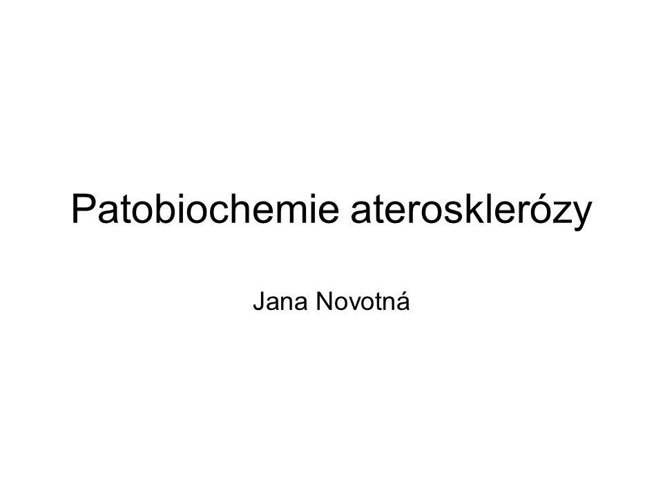 Patobiochemie aterosklerózy