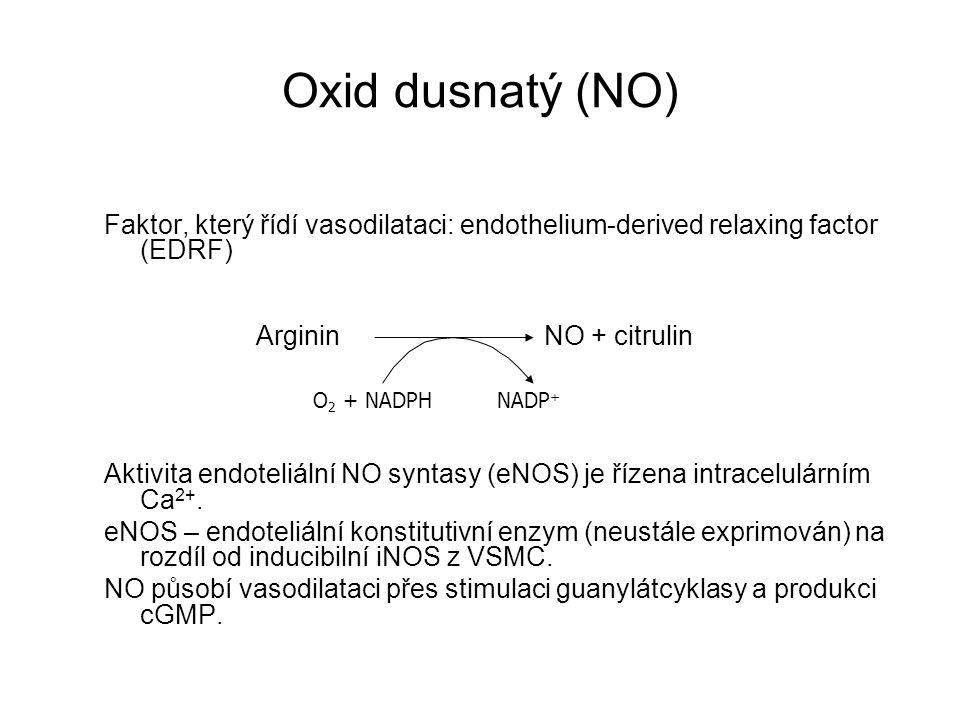 Oxid dusnatý (NO) Faktor, který řídí vasodilataci: endothelium-derived relaxing factor (EDRF)