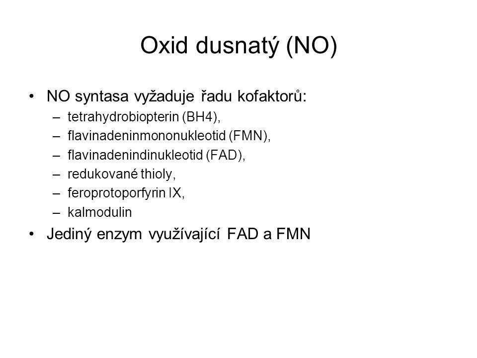 Oxid dusnatý (NO) NO syntasa vyžaduje řadu kofaktorů: