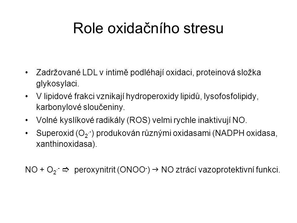 Role oxidačního stresu