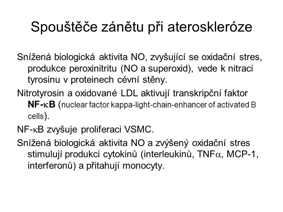 Spouštěče zánětu při ateroskleróze