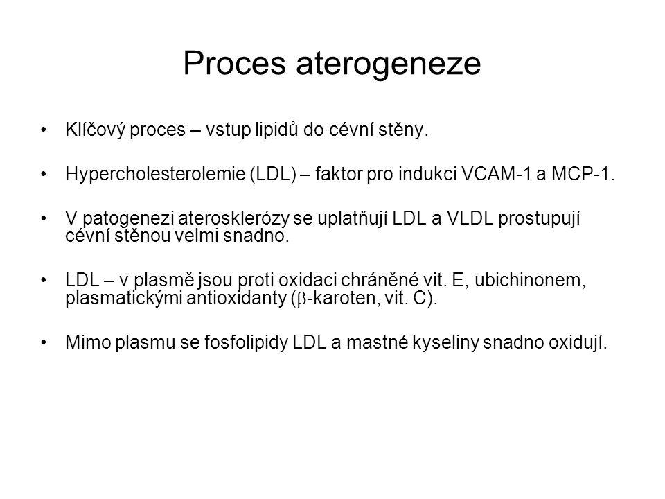Proces aterogeneze Klíčový proces – vstup lipidů do cévní stěny.
