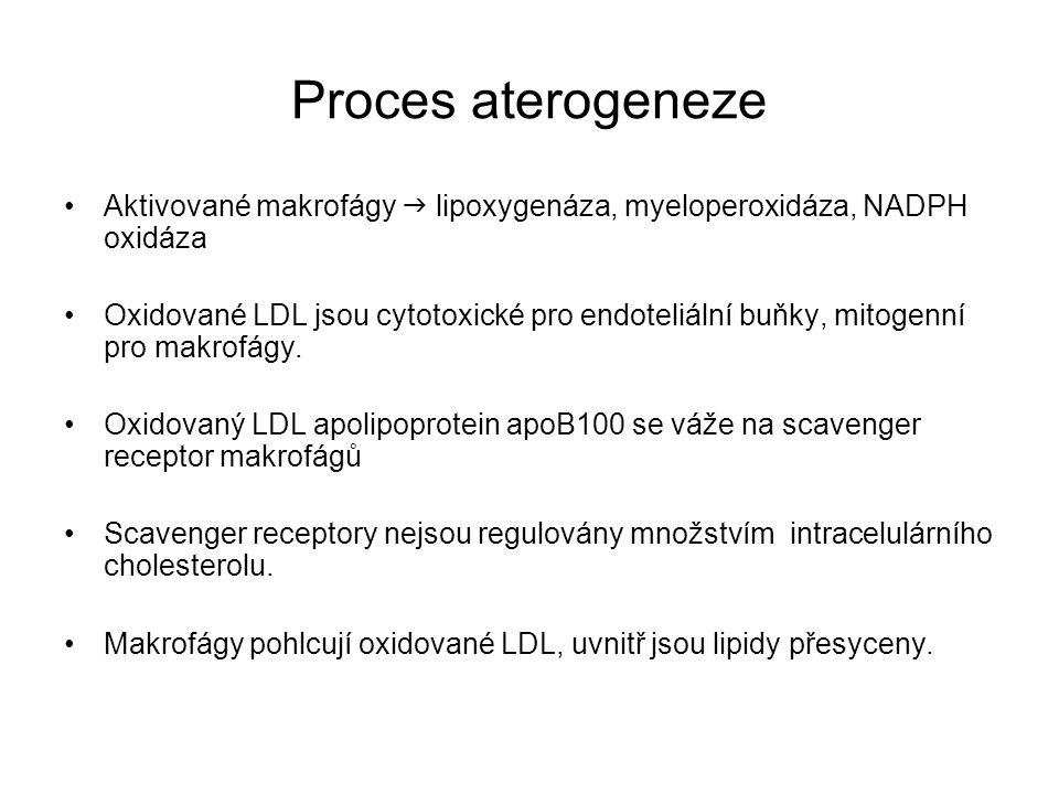 Proces aterogeneze Aktivované makrofágy  lipoxygenáza, myeloperoxidáza, NADPH oxidáza.