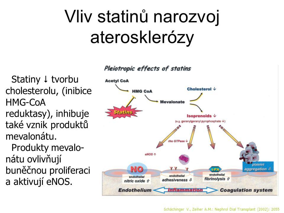 Vliv statinů narozvoj aterosklerózy