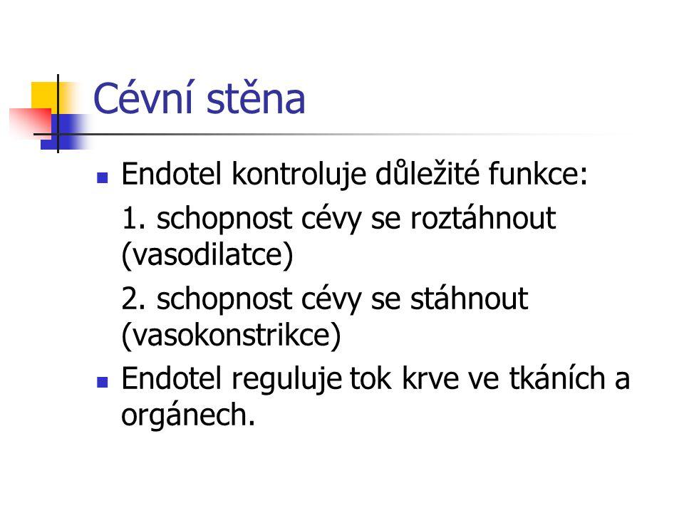 Cévní stěna Endotel kontroluje důležité funkce: