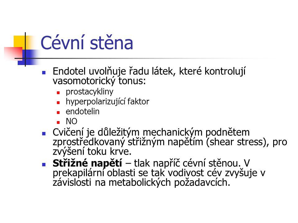 Cévní stěna Endotel uvolňuje řadu látek, které kontrolují vasomotorický tonus: prostacykliny. hyperpolarizující faktor.