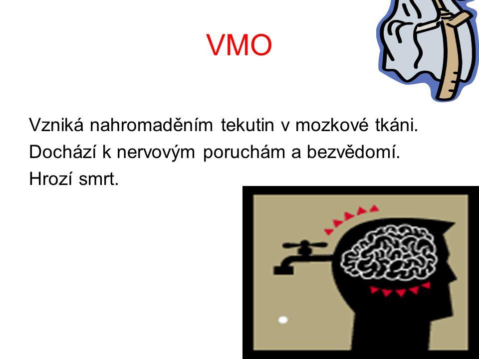 VMO Vzniká nahromaděním tekutin v mozkové tkáni.