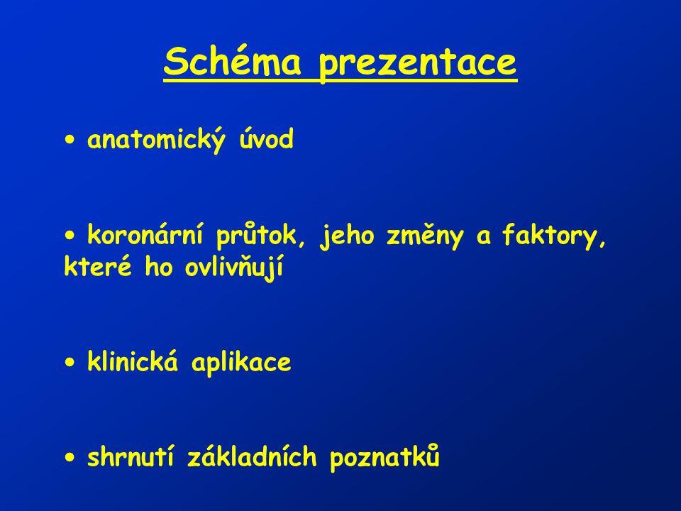 Schéma prezentace anatomický úvod
