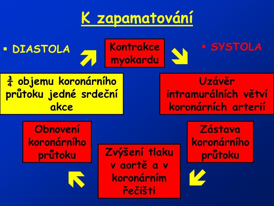     K zapamatování Kontrakce myokardu SYSTOLA DIASTOLA