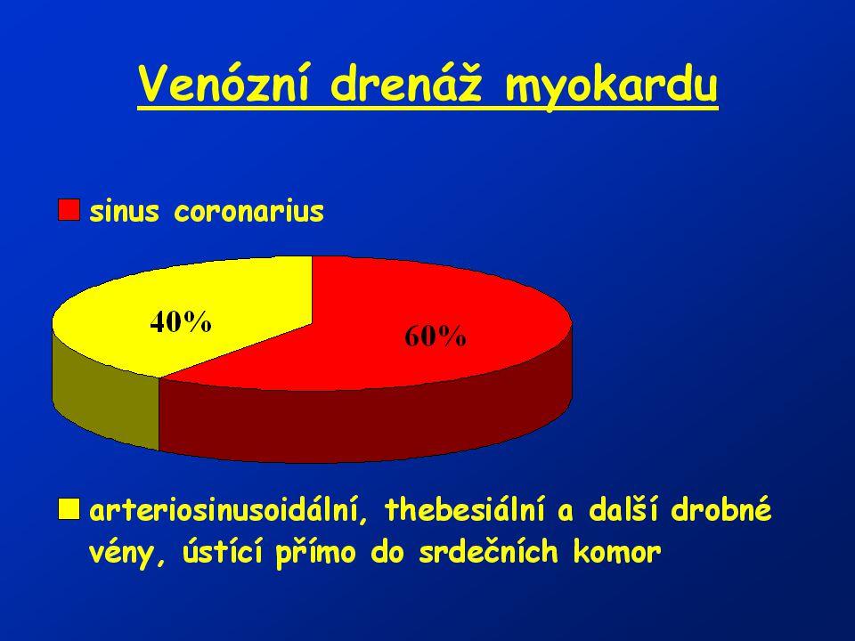 Venózní drenáž myokardu
