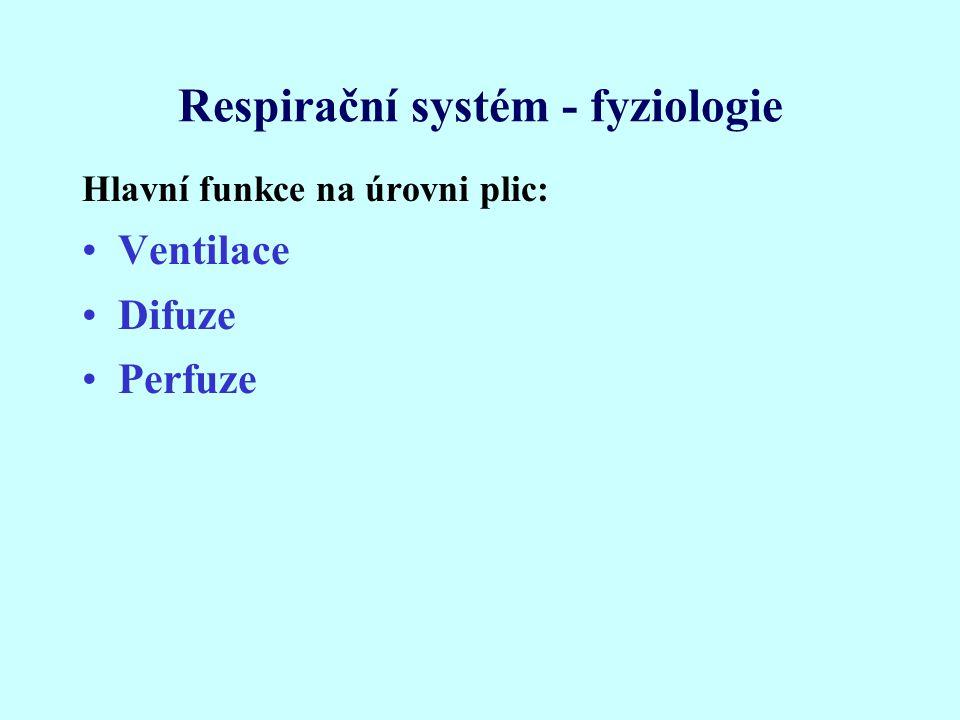 Respirační systém - fyziologie