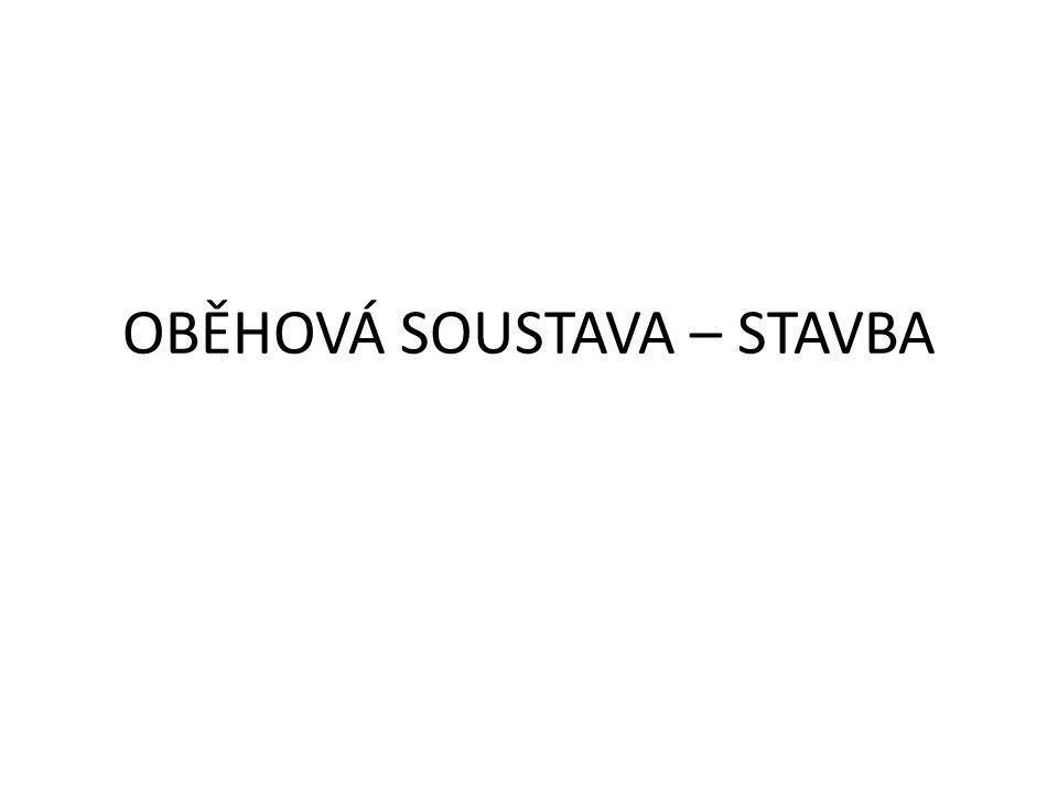OBĚHOVÁ SOUSTAVA – STAVBA