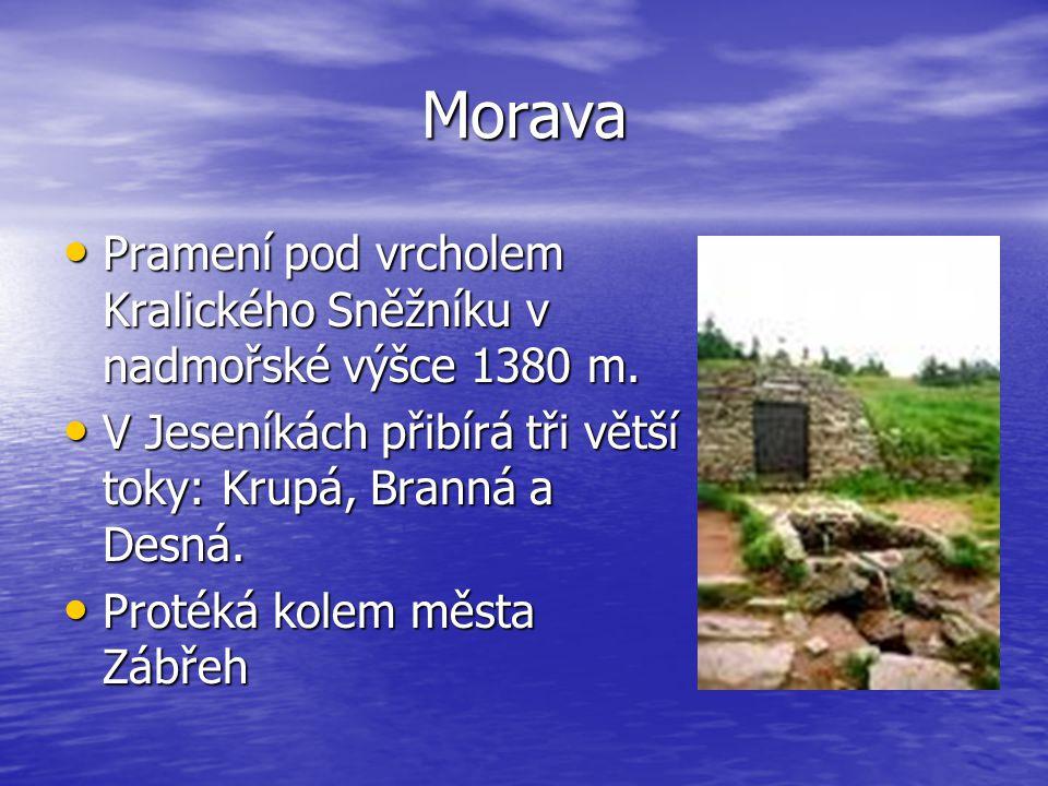 Morava Pramení pod vrcholem Kralického Sněžníku v nadmořské výšce 1380 m. V Jeseníkách přibírá tři větší toky: Krupá, Branná a Desná.