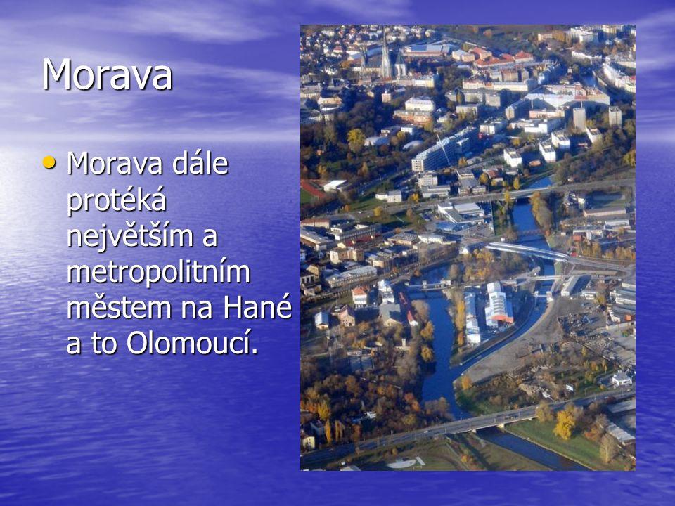 Morava Morava dále protéká největším a metropolitním městem na Hané a to Olomoucí.