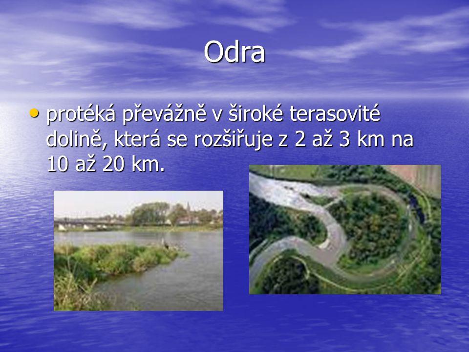 Odra protéká převážně v široké terasovité dolině, která se rozšiřuje z 2 až 3 km na 10 až 20 km.