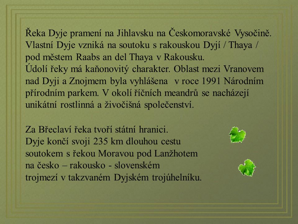 Řeka Dyje pramení na Jihlavsku na Českomoravské Vysočině.