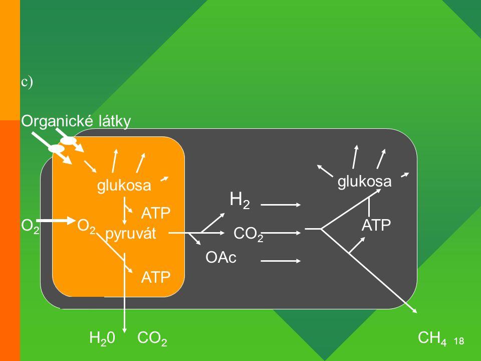 H2 c) Organické látky glukosa glukosa ATP O2 O2 ATP pyruvát CO2 OAc