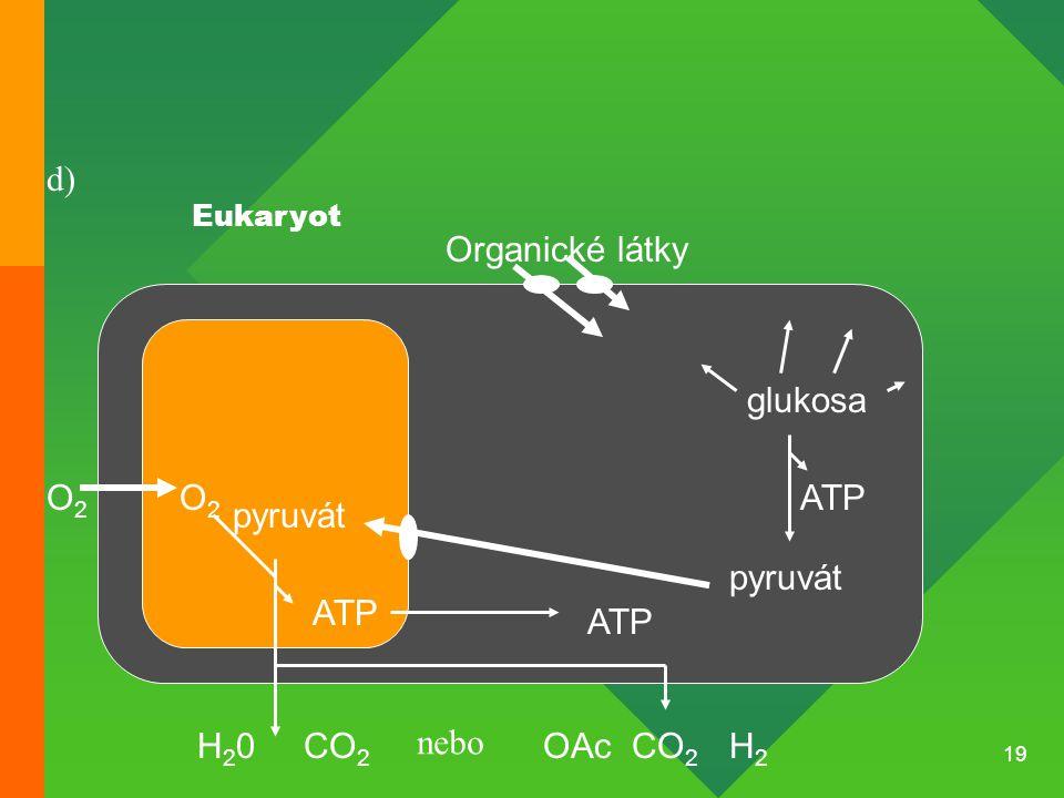 d) Organické látky glukosa O2 O2 ATP pyruvát pyruvát ATP ATP H20 CO2