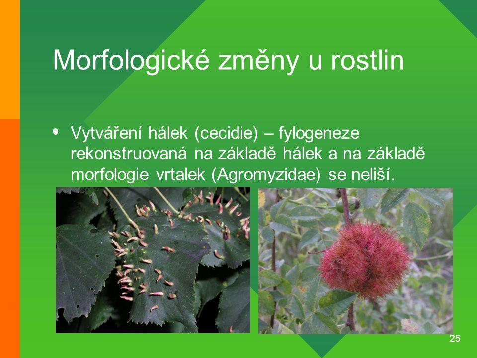 Morfologické změny u rostlin