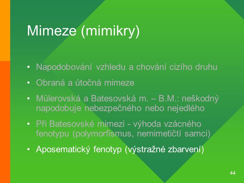Mimeze (mimikry) Napodobování vzhledu a chování cizího druhu
