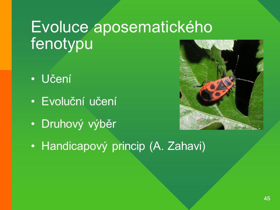 Evoluce aposematického fenotypu