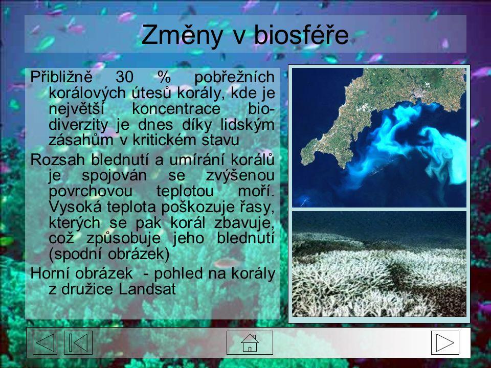 Změny v biosféře