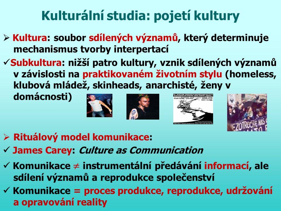 Kulturální studia: pojetí kultury