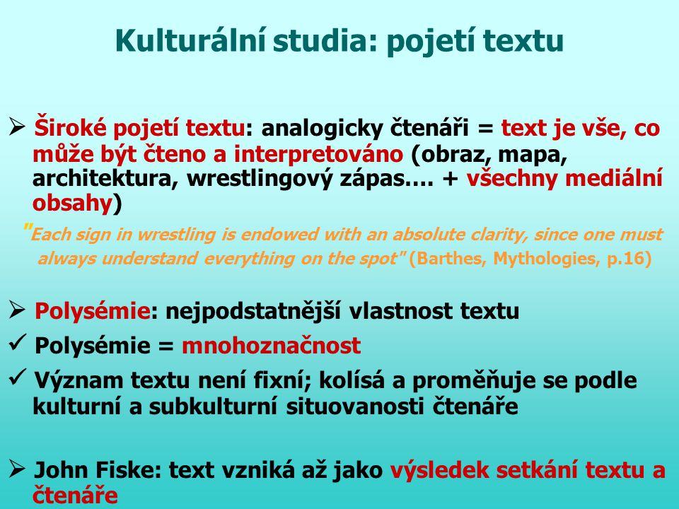 Kulturální studia: pojetí textu