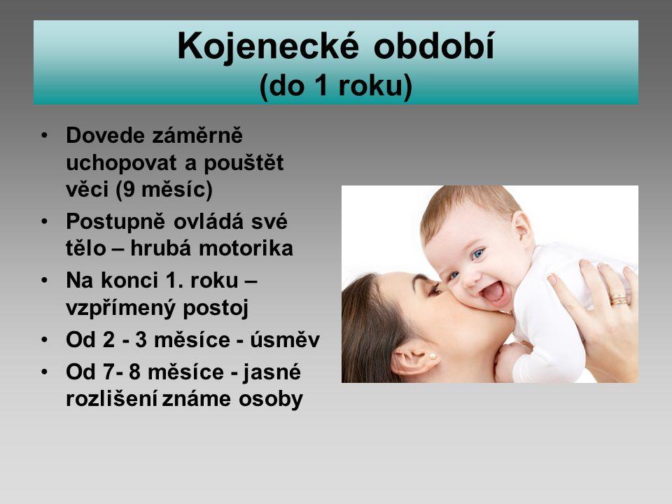 Kojenecké období (do 1 roku)