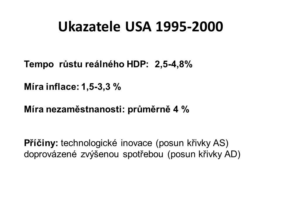 Ukazatele USA 1995-2000 Tempo růstu reálného HDP: 2,5-4,8%