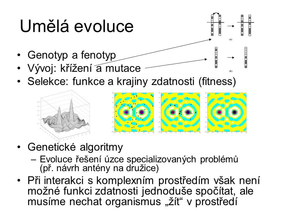 Umělá evoluce Genotyp a fenotyp Vývoj: křížení a mutace