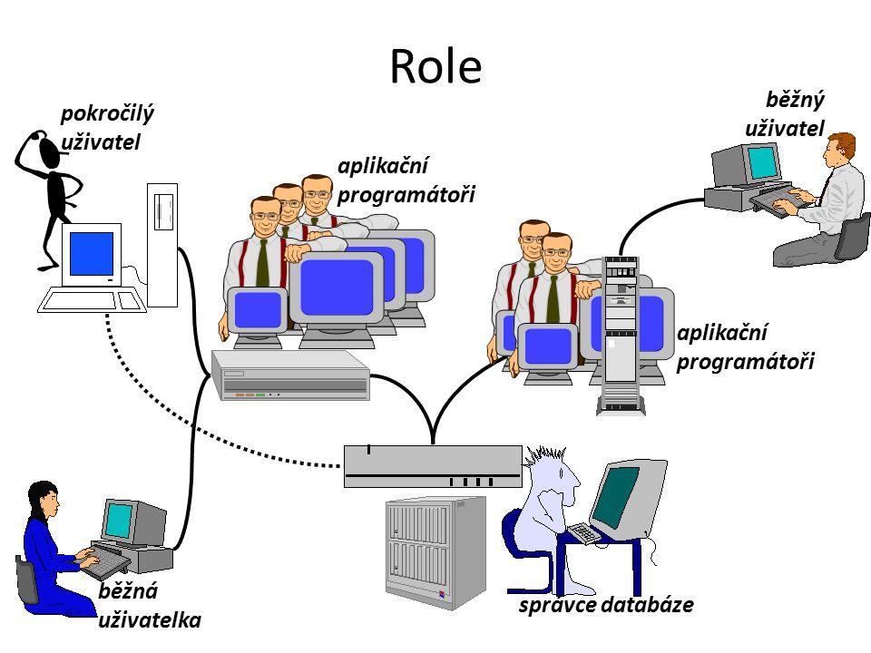 Role běžný uživatel pokročilý uživatel aplikační programátoři