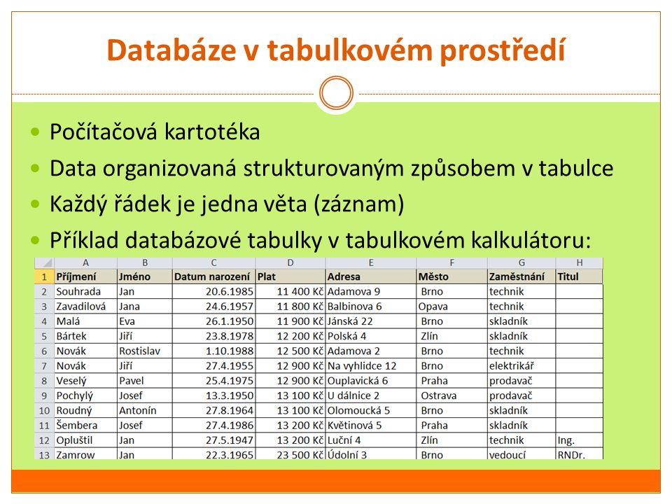 Databáze v tabulkovém prostředí
