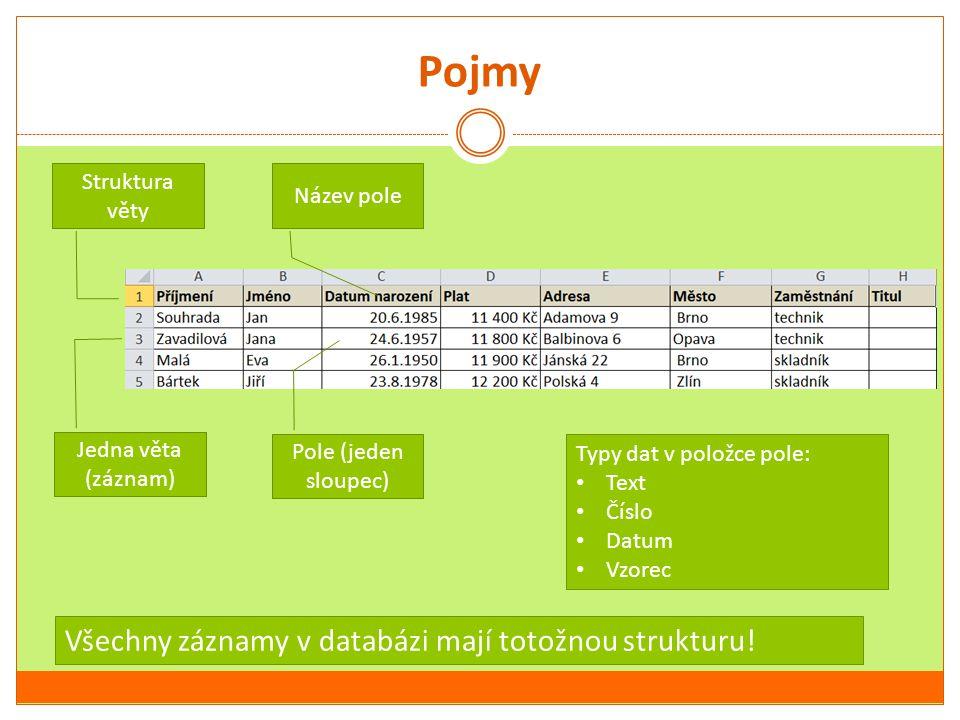 Pojmy Všechny záznamy v databázi mají totožnou strukturu!
