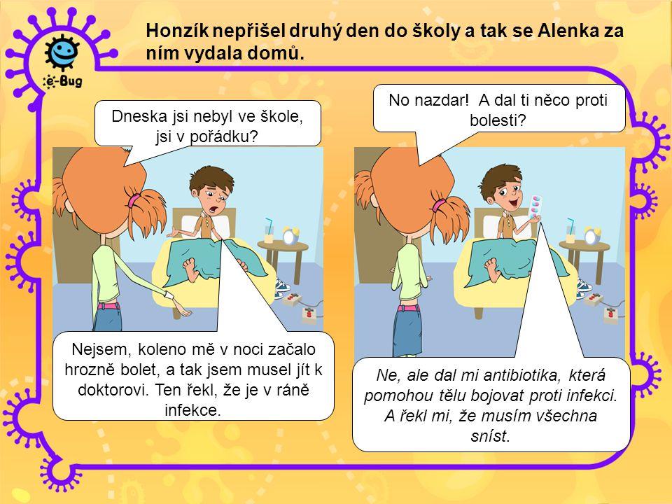 Honzík nepřišel druhý den do školy a tak se Alenka za ním vydala domů.