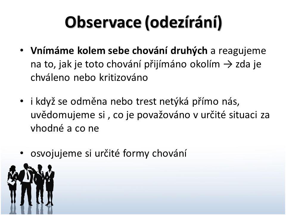 Observace (odezírání)