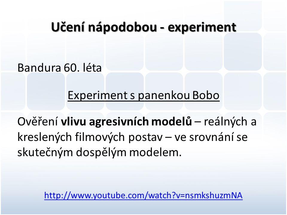 Učení nápodobou - experiment