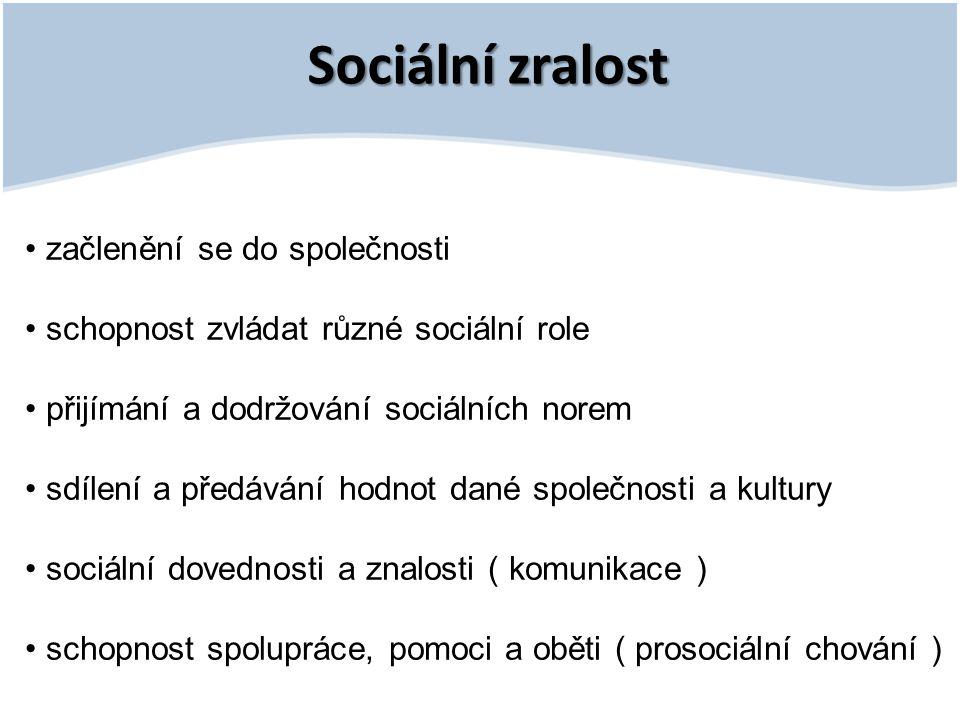 Sociální zralost • začlenění se do společnosti