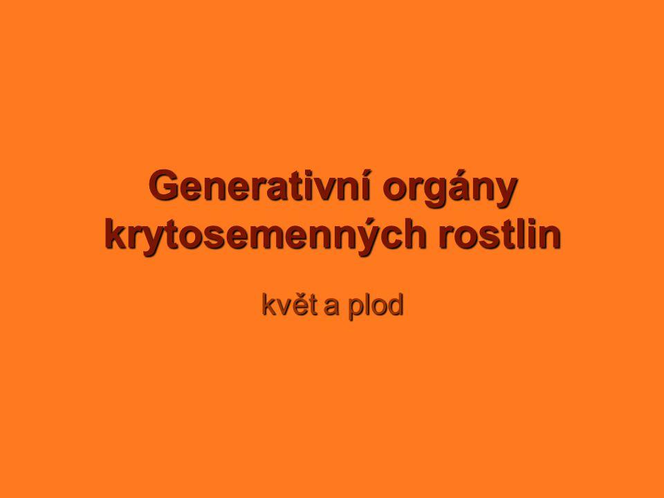 Generativní orgány krytosemenných rostlin