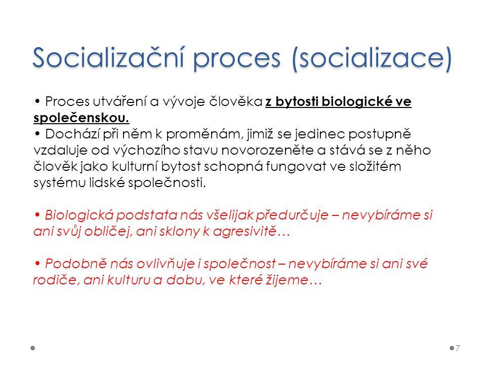 Socializační proces (socializace)