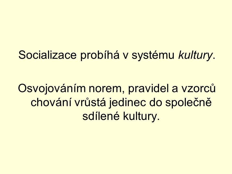 Socializace probíhá v systému kultury.