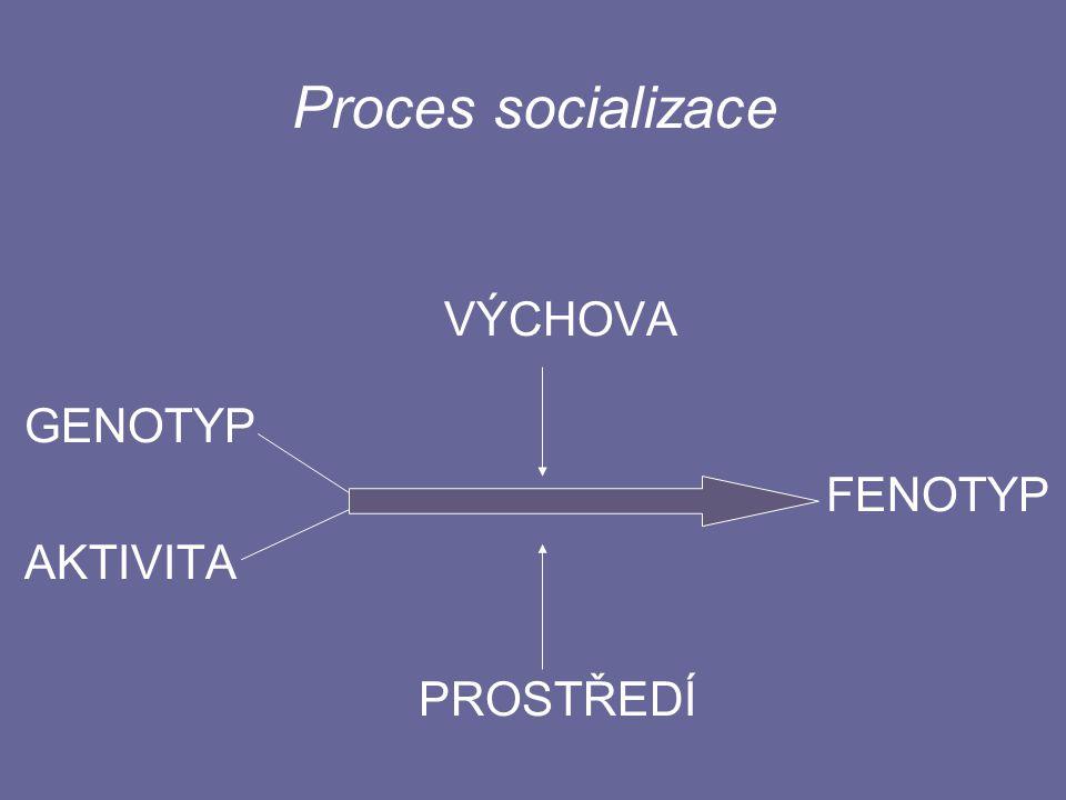 Proces socializace VÝCHOVA GENOTYP FENOTYP AKTIVITA PROSTŘEDÍ