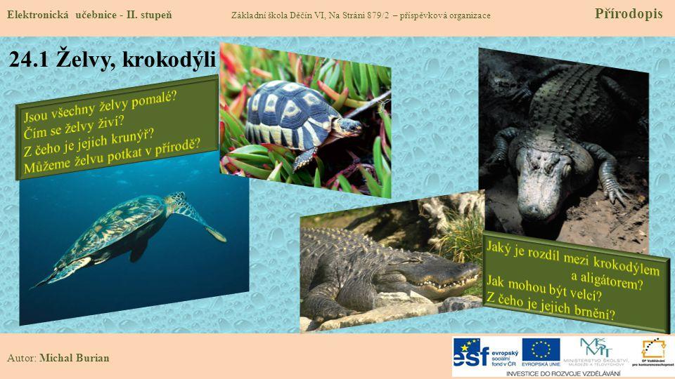 24.1 Želvy, krokodýli Jsou všechny želvy pomalé Čím se želvy živí