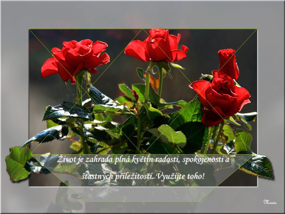 Život je zahrada plná květin radosti, spokojenosti a